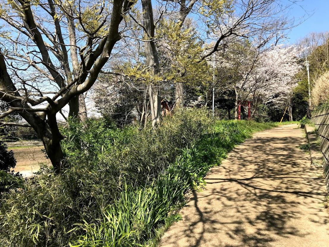 阿須波神社へ続く道
