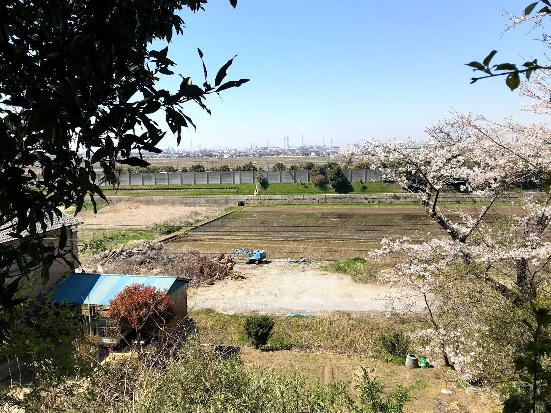 阿須波神社からの眺望